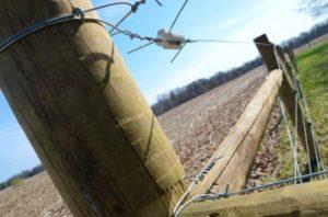 fence-360x238